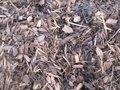 Naaldhoutschors Picea (Gemalen Boomschors) 20-40 mm