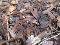 'Ecomulch' (Schors met vezels) 20-40 mm
